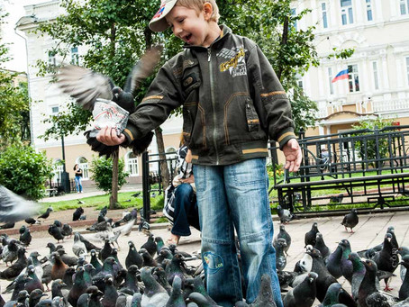 Siberian Boys and Pigeons