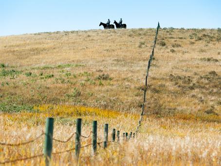 Glenbow Ranch Provincial Park, Golden Fall