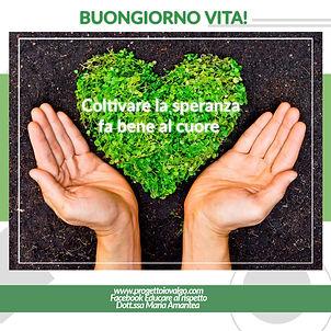 poster_1600235339139.jpg