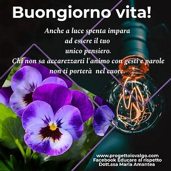 poster_1603173241569.jpg