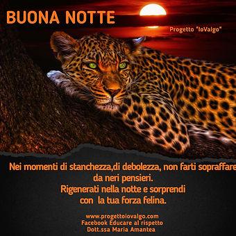 poster_1600891191610.jpg