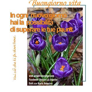 poster_1601725990576.jpg