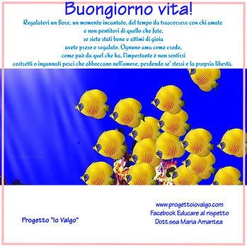 poster_1602410535526.jpg