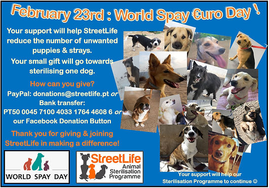 World Spay Euro Day Feb 2021.JPG