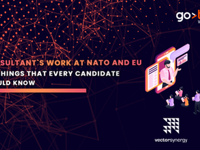 Consultant's work at NATO and the EU – 5 things that every candidate should know