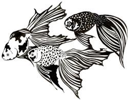 Goldfish Trio #2