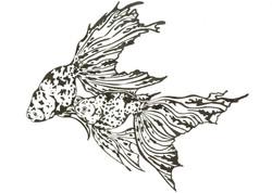 Goldfish Trio #1