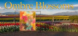 Ombre Blossoms Quilt