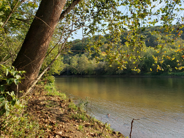 View of Youghiogheny River from Buena Vista.