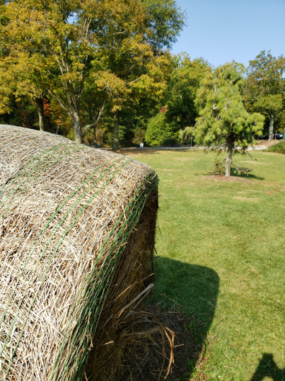 Hay bale at Round Hill Park