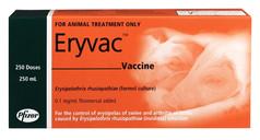Eryvac - 250ml