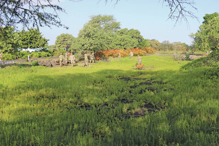 Anchialine Pond