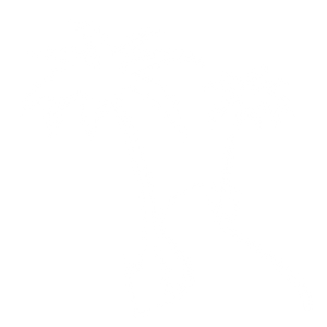 Friends For Fitness, Palm Tree, Path, Kona