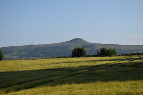 Falkland Hill from the studio