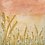 Thumbnail: Sunset Barley Meadow Mounted Art Print