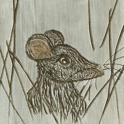 Scottish Wildlife Sgraffito Art Print