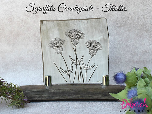 Sgraffito Ceramic Art-Thistles