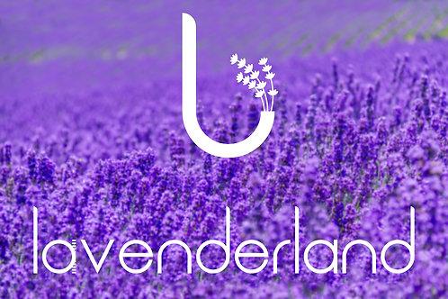 Hydrosol ~ Superblue Lavender