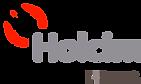 Logo-Holcim-Endoso-01.png