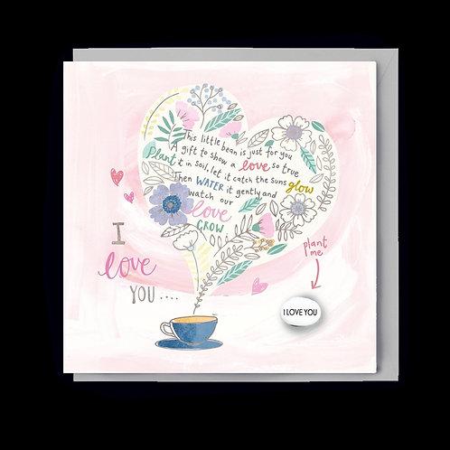 Love You Poem & Magic Growing Bean Card