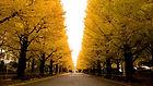 大学受験サポートコース|大学合格サポート塾マナビバ福岡