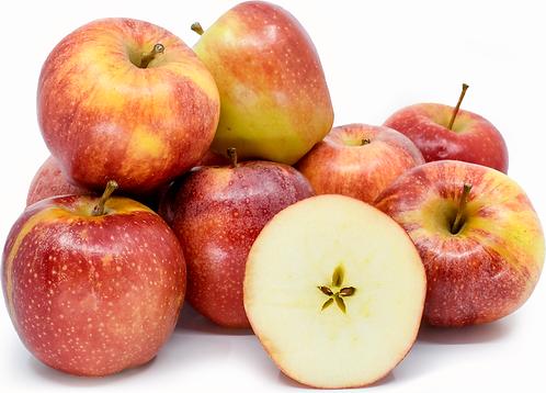 Apples Evelina per kg