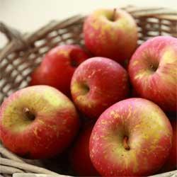 Apples Gala per kg