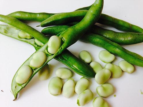Broad Beans - Fave - Ful per kg
