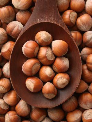 Hazelnuts in Shell per Kg