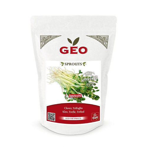 Clover Seeds for Sprouting 300g Geo