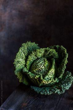 Cabbage Savoy - Verza per kg