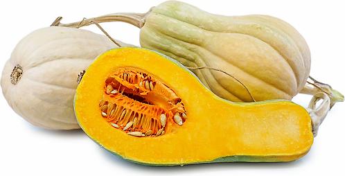 Pumpkin Violina per kg