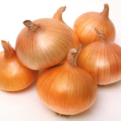 Onions Golden Demeter per kg