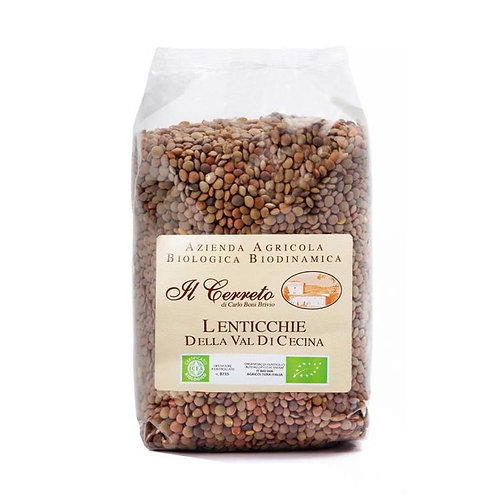 Lentils from the Cecina Valley 400g