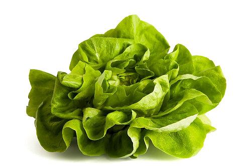 Lettuce Butter - Per Kg