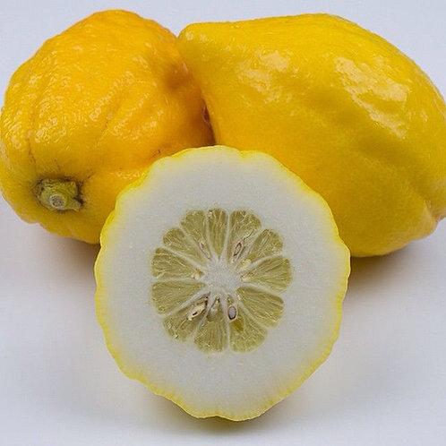 Citron - Cedri per kg