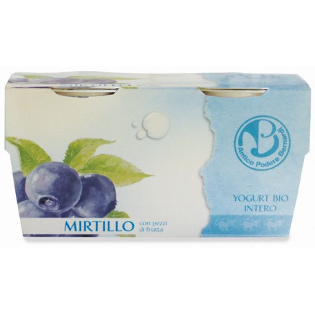 Blueberry Yoghurt 125x2g