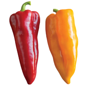 Peppers Bull Horn Red/Yellow - per kg