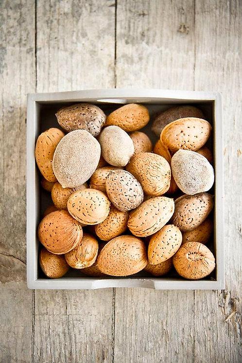 Almonds in Shell per Kg