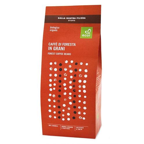 Coffee Beans 500g