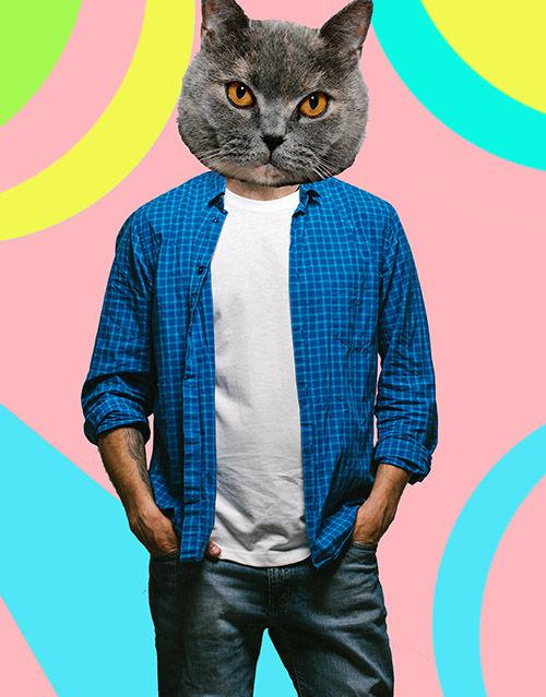 Hipstercat.jpg
