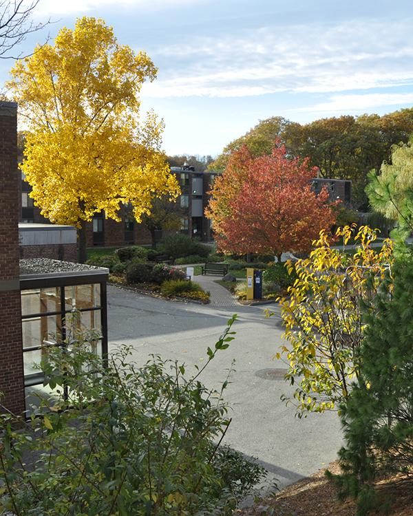 Brandeis Campus