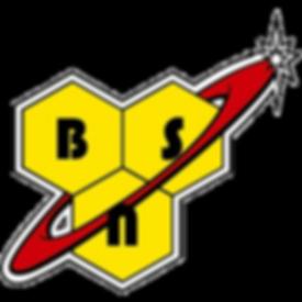 bsn-logo.png