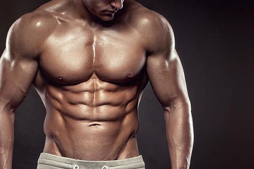 MUSCLE MASS PROGRAM DOWNLOAD