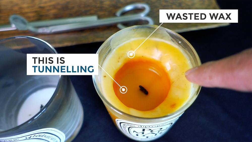 Candle How To Avoid Tunnelling Wasted Wax Diptyque