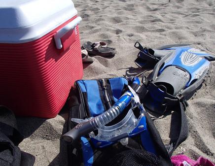 snorkeling on Catalina