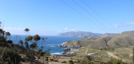 Catalina tour