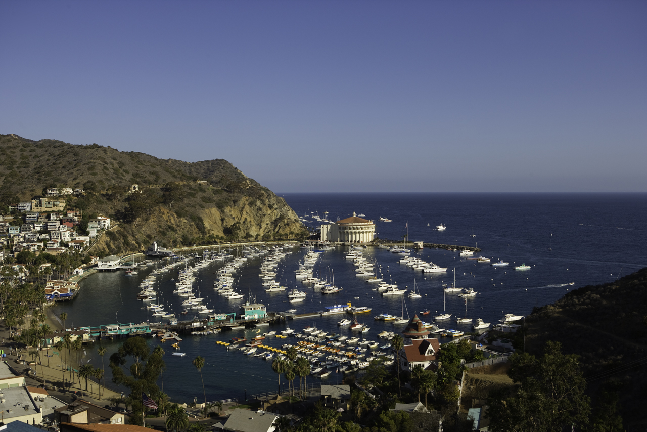 Catalina hotel deals