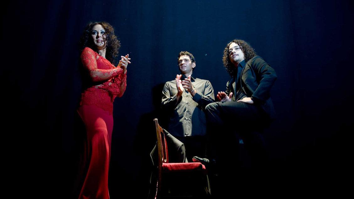 sonia-ismael-flamenco-gallery-05.jpg