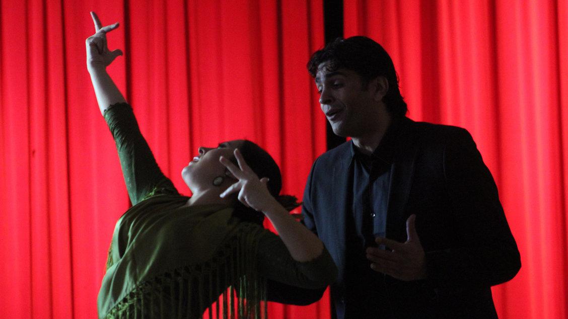 sonia-ismael-flamenco-gallery-04.jpg